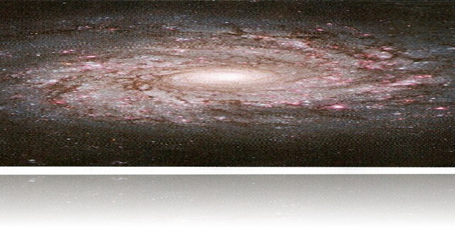 NGC 3982